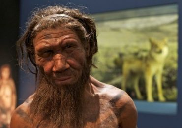 10 Surprising Facts You Never Knew About Neanderthals