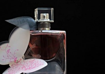 Home Fragrance Options for Scent Lovers