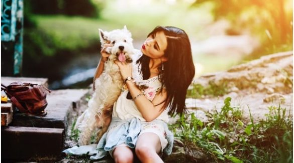 Tips For Helping Organise A Pet Sitter